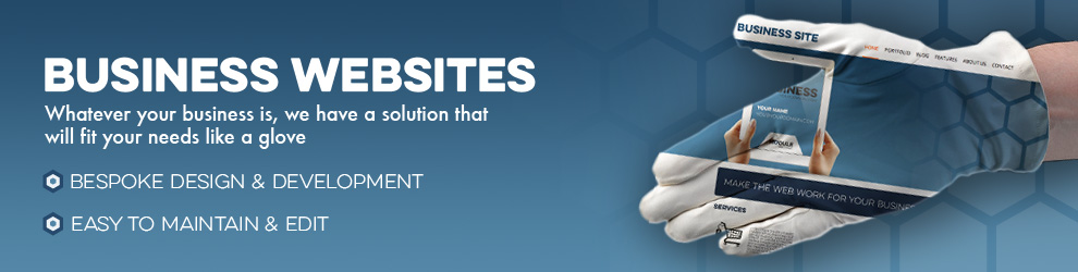 module web design business website solutions
